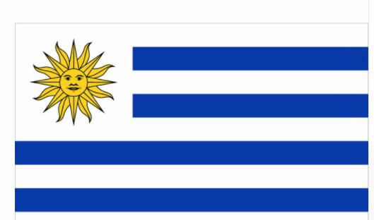 Uruguay National Country Flag